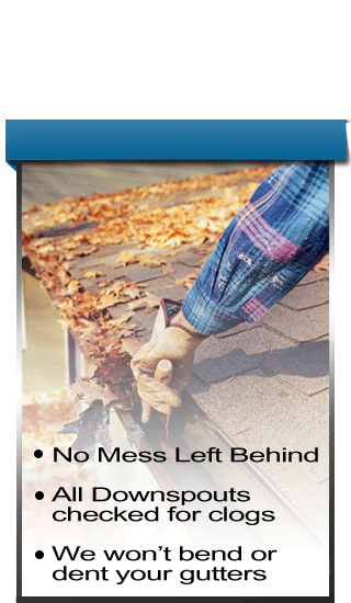 Gutter Cleaning Picture on menu