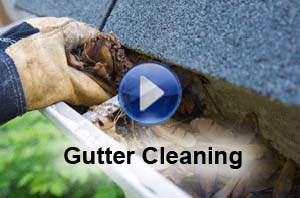 Whitening Gutter Cleaning Service Nashville Tn 37211